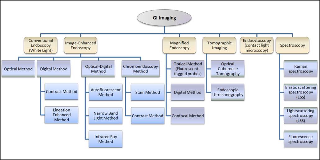 Gastrointestinal Endoscopy Landscape Report Dolcerawiki