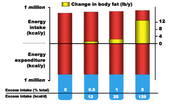 Figure 1. Cumulative effect of small daily imbalances in energy intake on body fat mass