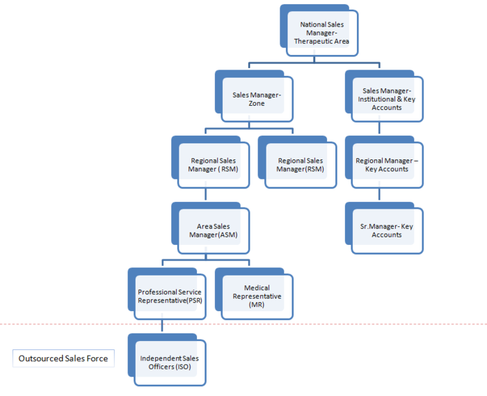 Typical Sales Force Structure1.png